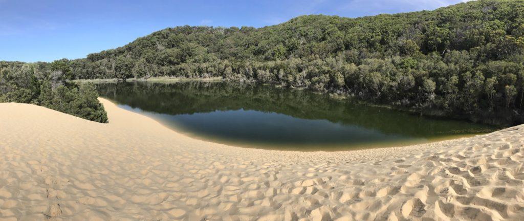 אגם וואבי